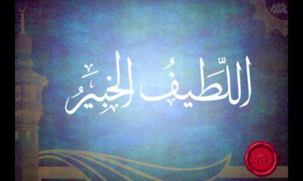 Al-Lathif (Maha Halus) dan Al-Khabir (Maha Mengetahui)